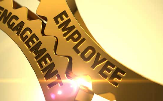 How-to-leverage-employee-surveys-for-sucess